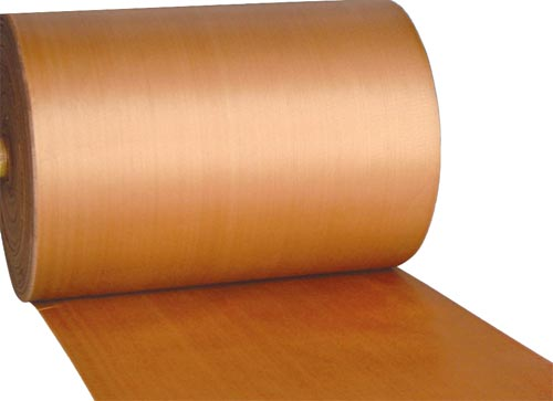 Hygienic Food Grade Conveyor Belts
