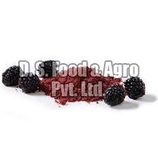 Dehydrated Black Berry Powder