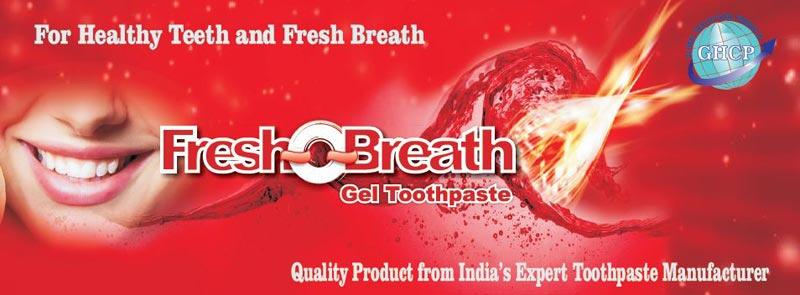 Fresh-O-Breath Gel Toothpaste