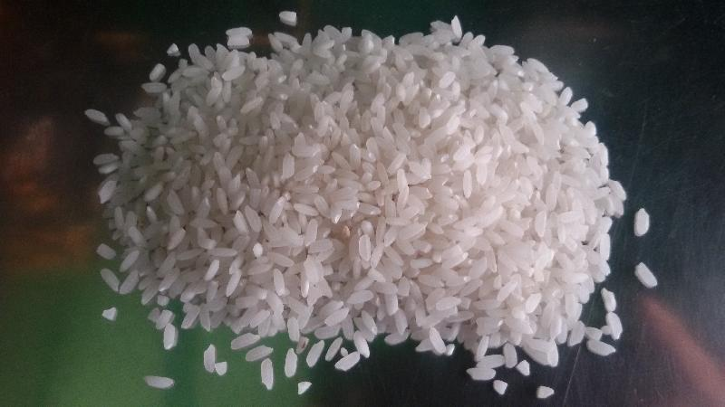Raw Rice 03
