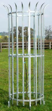 Mild Steel Tree Guard