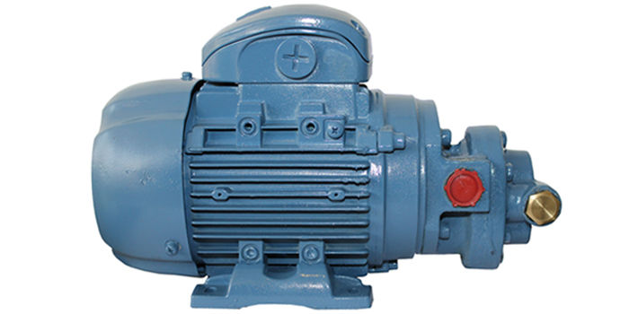 HGCX Type Monoblock Priming Pump 02