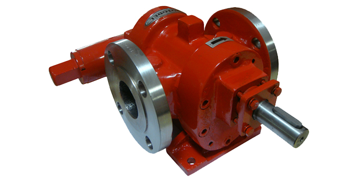 RDMS Type Rotary Gear Pump 02