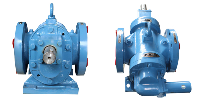 RDRN Type Rotary Gear Pump 01