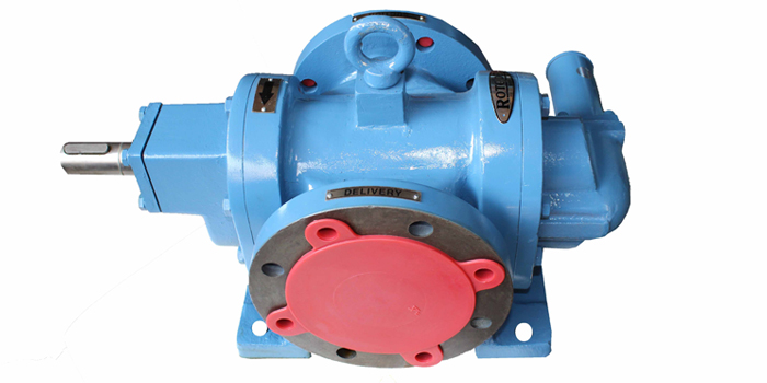RDRN Type Rotary Gear Pump 02