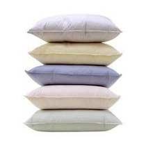Recron Pillows