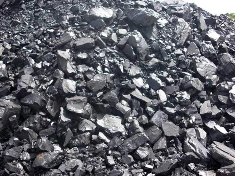 Steam Coal and Pet Coke