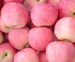 Fresh China Fuji Apple