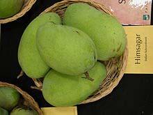 Mango Himsagar