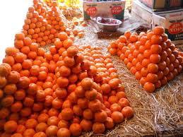 Oranges from Darjeeling