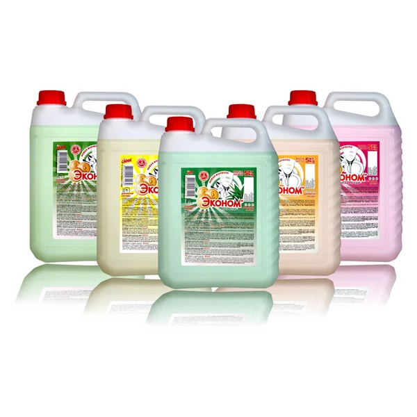 Dishwashing Liquid Ekonom