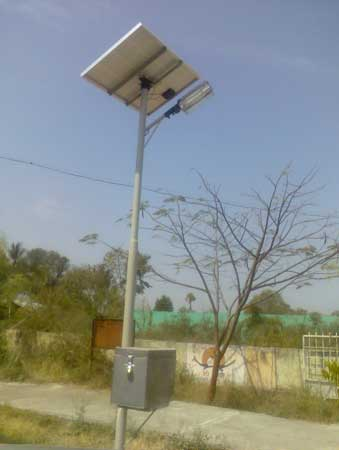 Solar CFL Street Light