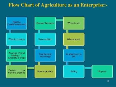 Contract Farming Services 01