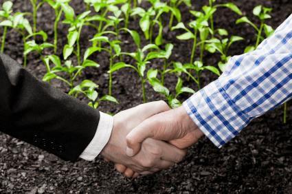 Contract Farming Services 04