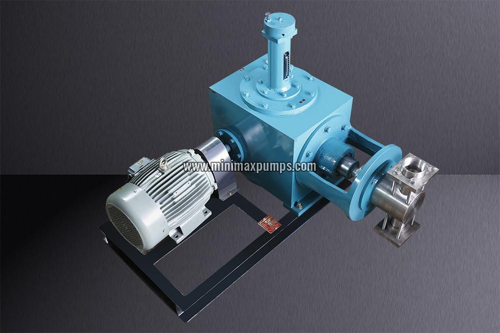 Multiple Head Metering Pump