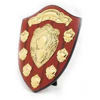 Metal Shields
