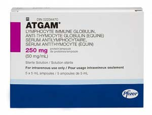 Atgam 250mg Injection