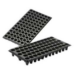 Plug Trays