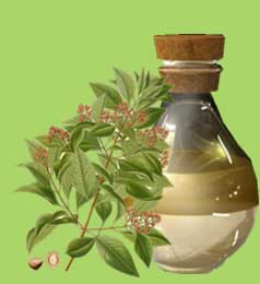 Sandalwood Oil Supplier