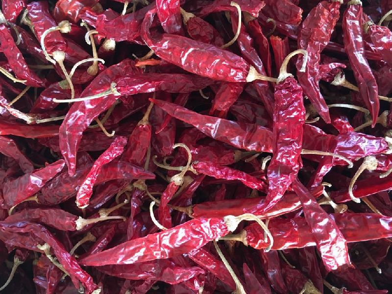 Dried Red Chilli 03