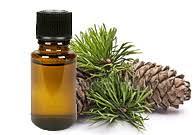 Cedarwood Himalayan Oil