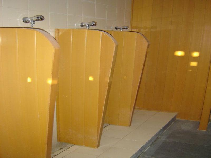 Bathroom Partition 001