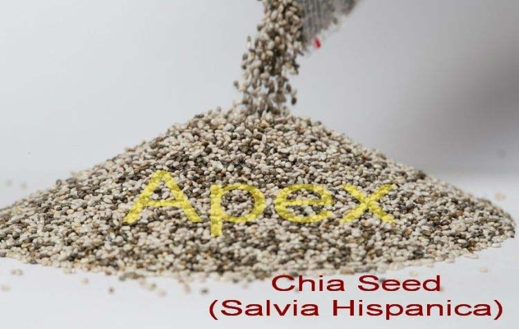 Chia Seed 01