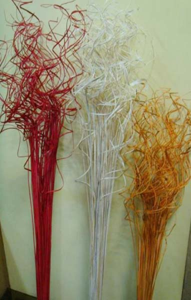 Decorative Dried Branches 01
