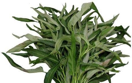 Fresh Kangkong
