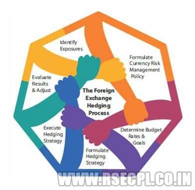 Forex Risk Management Policy