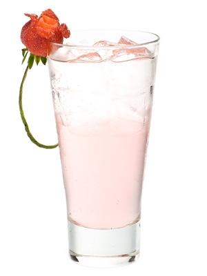 Litchi Soft Drink Concentrate - Manufacturer Exporter