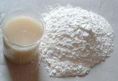 White Glue Adhesive