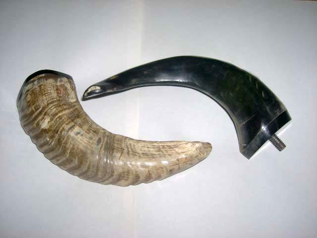 Horn and Bone Door Handle 09