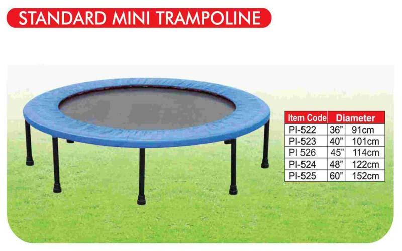 Standard Mini Trampoline