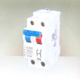 Double Pole Miniature Circuit Breaker