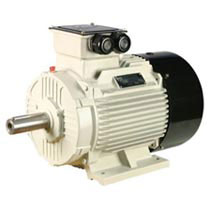 Kirloskar Three Phase Electric Motor