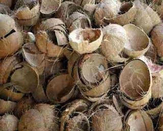 Coconut Shells