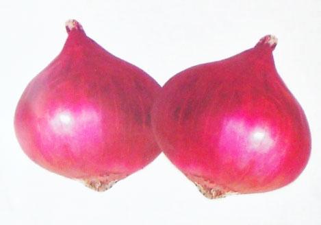 Mayur Nashik Red Onion Seeds