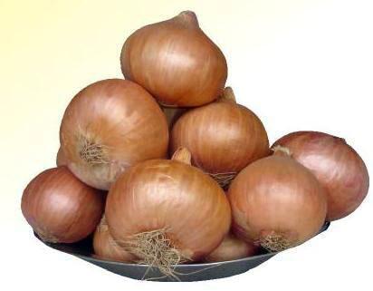 Mayur Puna Fursungi Onion Seeds
