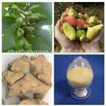 Tannic Acid Food Grade (YGMF - II)