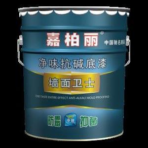 Plastic Emulsion Paint