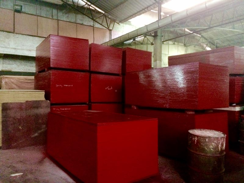 Shuttering Plywood 01