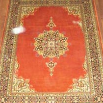 Single Knotted Carpet (10x2.5)
