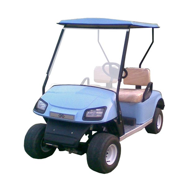 Two Seater Golf Cart