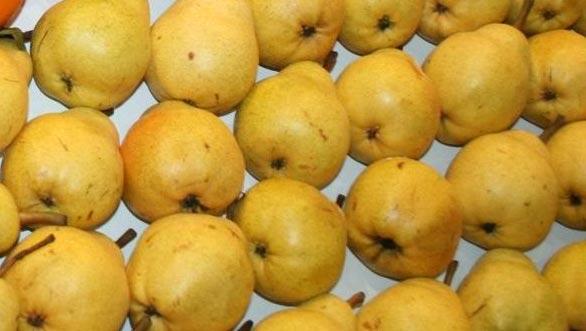 Fresh Pears 01