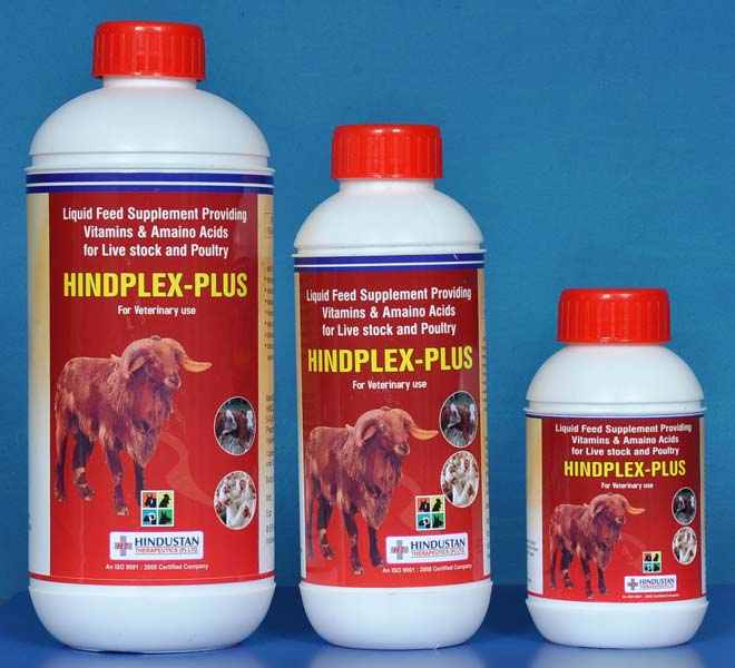 Hindplex Plus Feed Supplements