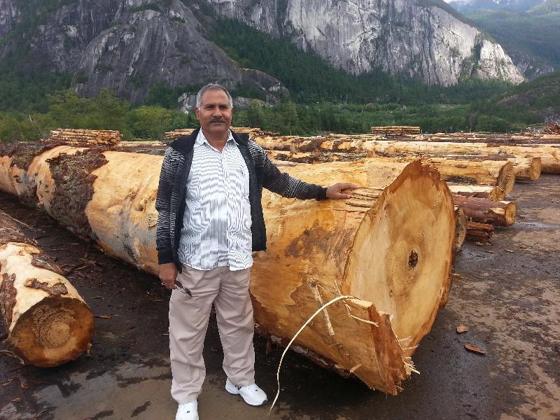 Douglas Fir Logs