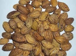 Harra Seeds