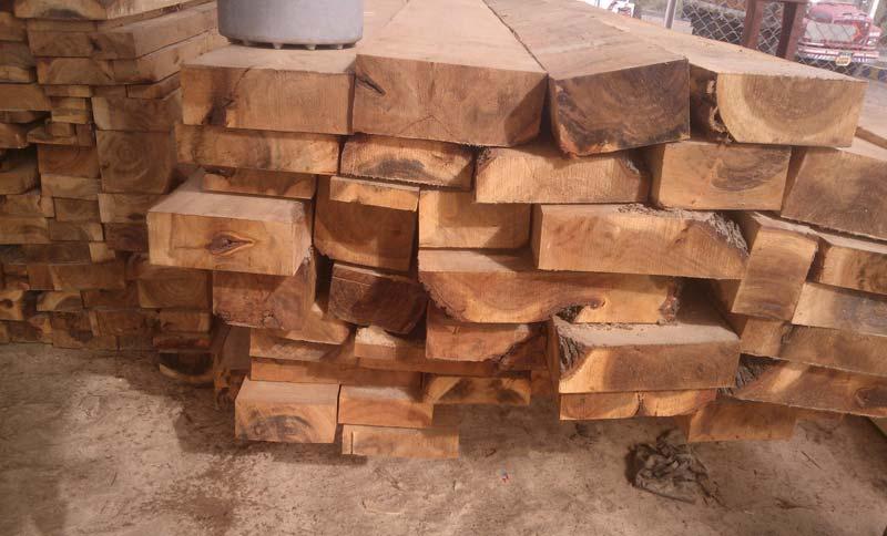 Babool Wood Cut Size