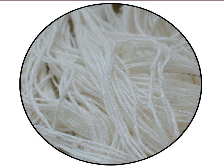 Carpet Yarn 05
